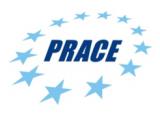 Logo PRACE